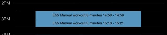 e55 manual workout